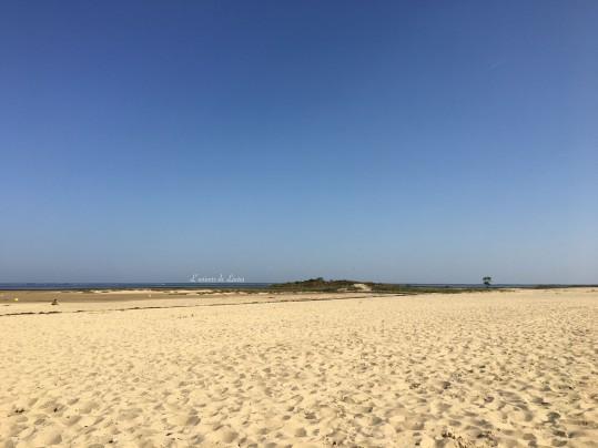 plage derniere